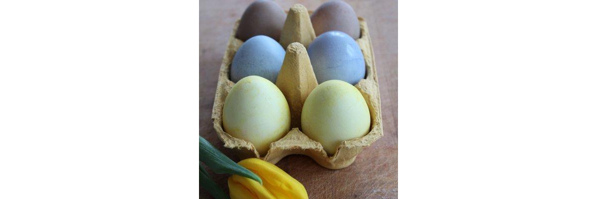 Selbstgemachte Deko: Natürlich gefärbte Ostereier -